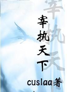 宰执天下全集TXT精校下载-作者:cuslaa